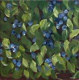 Blueberries II Art Print