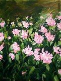Dahlia Fields Art Print