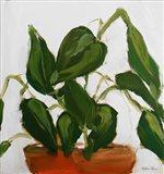 Plant II Art Print