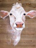 White Cow Art Print