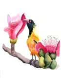 Pink Beak Art Print