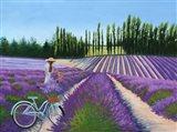 Picking Lavender Art Print