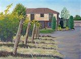 Villa at VaPiano Art Print