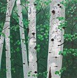 Shady Grove Art Print