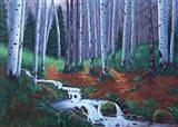 Stoney Creek Art Print