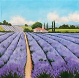 Essence of Provence Art Print