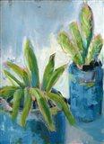 Southwestern Garden II Art Print
