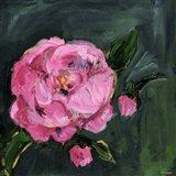 Romantic Floral I Art Print