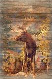 Majestic Moose Art Print