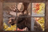 There's a Moose at the Window Art Print