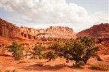 Capital Reef Utah Art Print