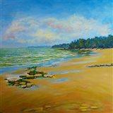 Sand Cove Bay Art Print
