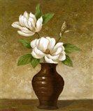 Flowering Magnolia Art Print