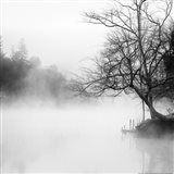 Fog on the Lake Art Print