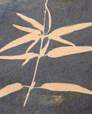 Blue XIII Art Print