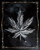 Carpe Cannabis Art Print