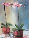 Orchid and Lace I Art Print