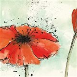Not a California Poppy III Art Print