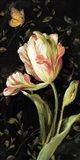 Jardin Paris Florals II Art Print
