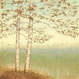 Golden Birch I with Blue Sky Art Print