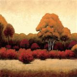 Autumn Forest I Art Print