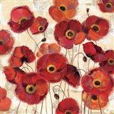 Bold Poppies Art Print