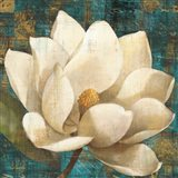 Magnolia Blossom Turquoise Art Print