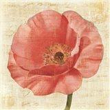 Blushing Poppy on Cream Art Print