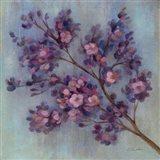 Twilight Cherry Blossoms II Art Print