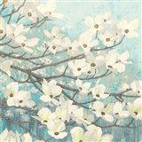 Dogwood Blossoms II Art Print