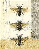 Golden Bees n Butterflies No 1 Art Print