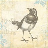 Engraved Birds II Art Print