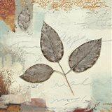 Silver Leaves II Art Print