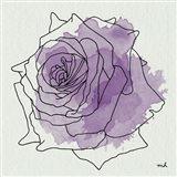Watercolor Floral IV Art Print