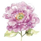 Water Flower I Art Print
