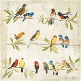 Adoration of the Magpie Music Art Print