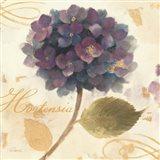 Abundant Hydrangea II Art Print
