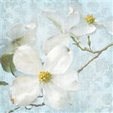 Indiness Blossom Vintage I Pale Art Print