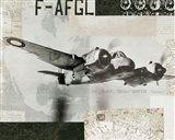 Wings Collage III Art Print