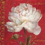 Paris Blossom IV Art Print