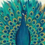 Proud as a Peacock I Art Print