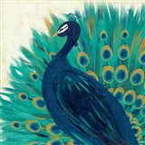 Proud as a Peacock II Art Print