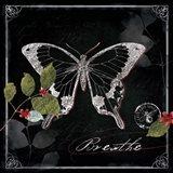 Chalkboard Wings I Art Print