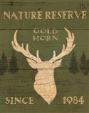 Lodge Signs IX Green Art Print