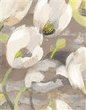 Tulip Delight I Art Print