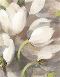 Tulip Delight II Art Print