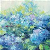 Bright Hydrangea II Art Print