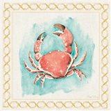 Coastal Mist Crab Border Turquoise Art Print