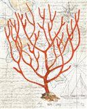 Textured Coral I Art Print