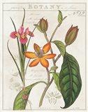 Vintage Flora III Ivory Art Print